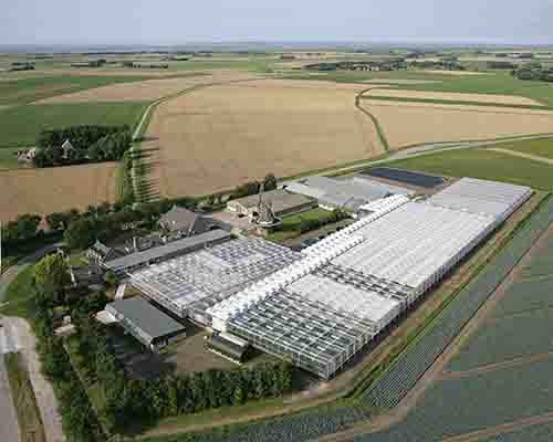 Wifi installatie bedrijfshallen en kassen HZPC Holland research